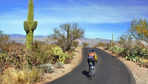 Bazi-arizona-biking